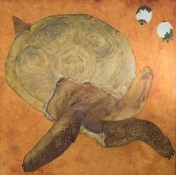 La-tortue