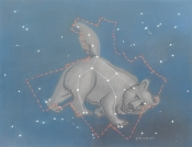 Les-métamorphoses-d'ovide---la-grande-ourse